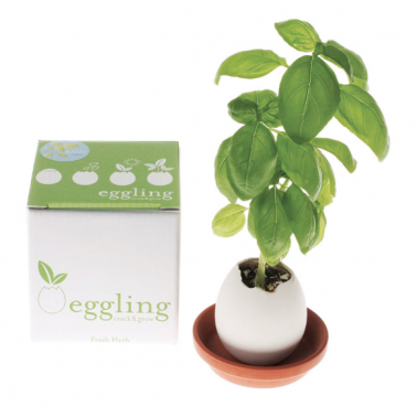 Eggling Growing Garden - 5 different options