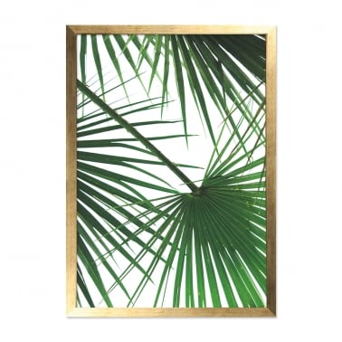 Palm Print Framed Poster, Gold And Green, A2